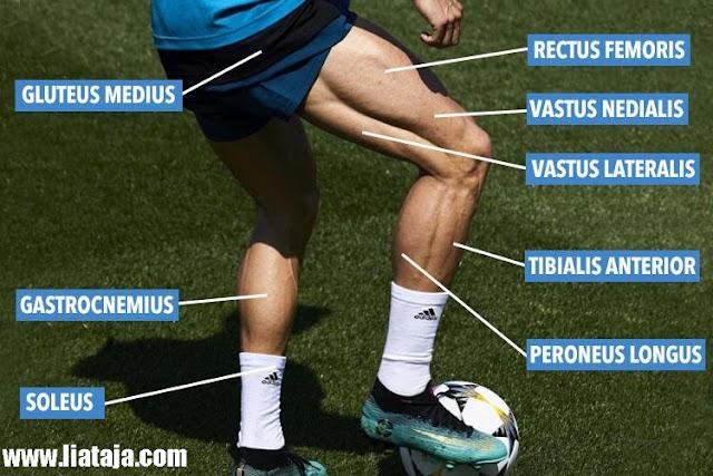 Foto Kekarnya Otot Badan Cristiano Ronaldo - liataja.com
