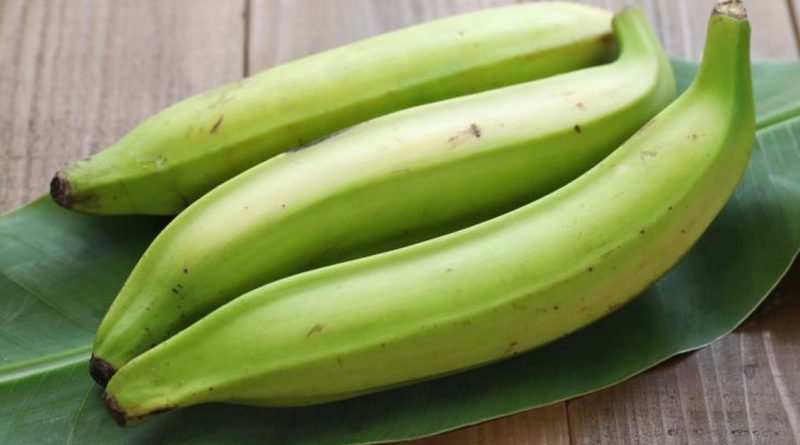 Best way to Cure Stomach Ulcer with Unripe Plantain - Africa