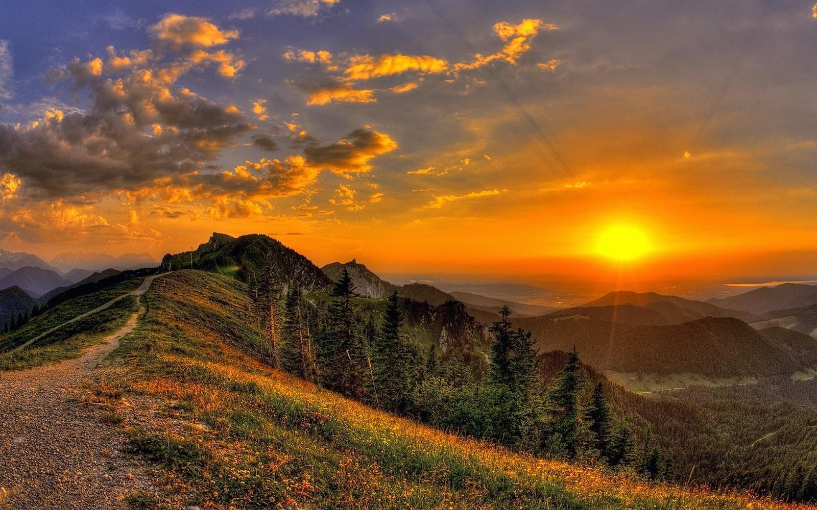 100% Desktop Quality HD Wallpapers 1080p Free Download: Top 28 Nature Wallpapers HD Free Download
