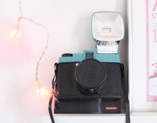 retro camera used as shelving decoration Diana Instant