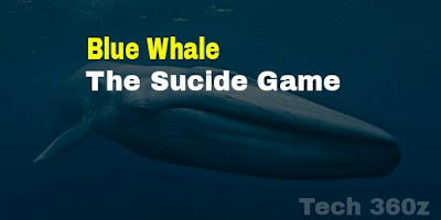 Blue Whale (game). Everything About It.