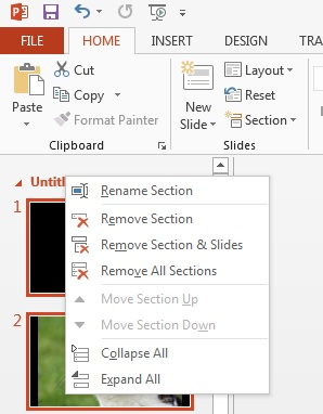 PowerPoint 2013 home section