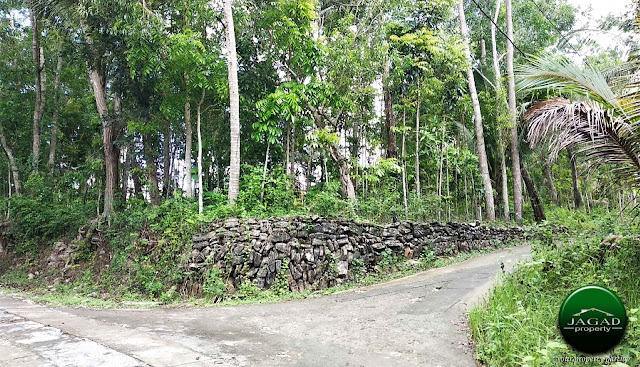 Tanah Tepi jalan Aspal di Panjatan