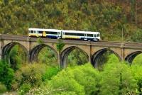 Turismo ferroviario, experiencias con niños, viajes en tren turístico