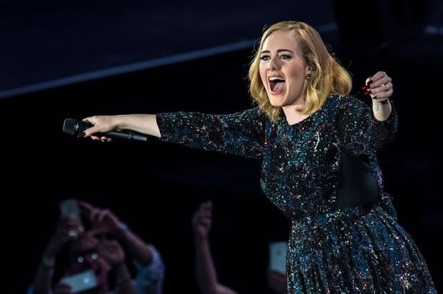 Adele perde a cabeça com fã em show