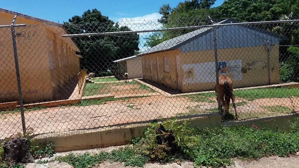 De últimos minutos desconocidos roban las baterías del inversor de la escuela primaria Fidelina Feliz de La Guázara de Barahona.