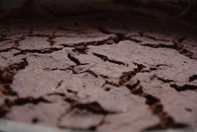 bezglutenowe ciasto czekoladowe z fasoli