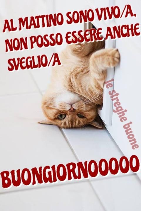 Amato Le streghe buone ® the original (pagina facebook): Link del  JK63