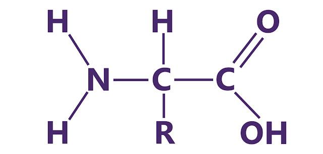 Aminoacidos y biologia molecular
