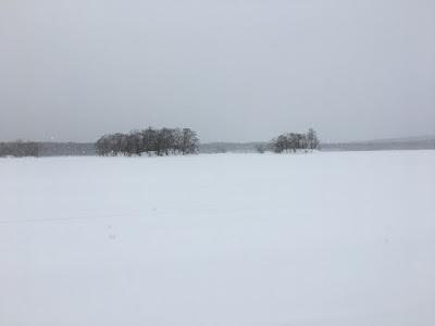 大沼の湖上