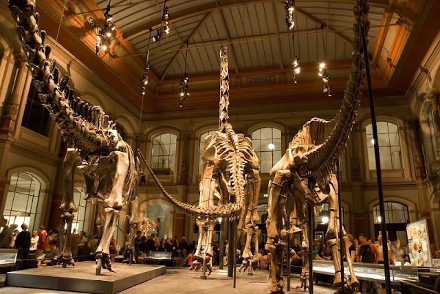 Museum für Naturkunde em Berlim