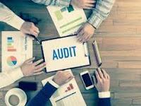 Penentuan Materialitas Audit