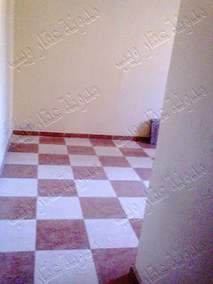 شقة للبيع بالإسكندرية دور أول علوى متشطبة تصلح عيادة أو سكن أو مكتب