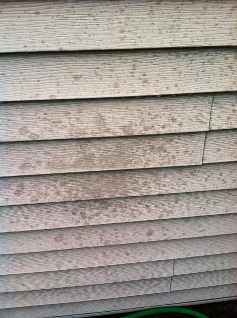 How To Clean Grease Stains Off Vinyl Siding Craftivity