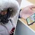 iPhone X tak berfungsi dalam cuaca sejuk