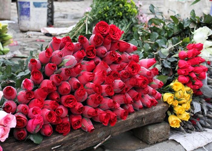 Những Đóa Hoa Thường Cắm Trong Gia Đình Ngày Tết 9