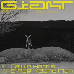 Giant – Calvin Harris & Rag'n'Bone Man – Mp3