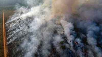 حرااائق غابات الامازون, البرازيل, رئة العالم,
