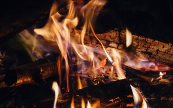 Wallpaper: Wood of Fire. Flames of Fire