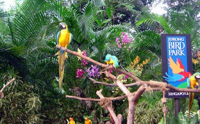 Jurong Bird Park - Trips Wheel Pvt Ltd