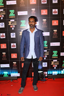 Bollywood Celebrities on the Red Carpet Of Zee Cine Awards 2017 Exclusive 021.JPG