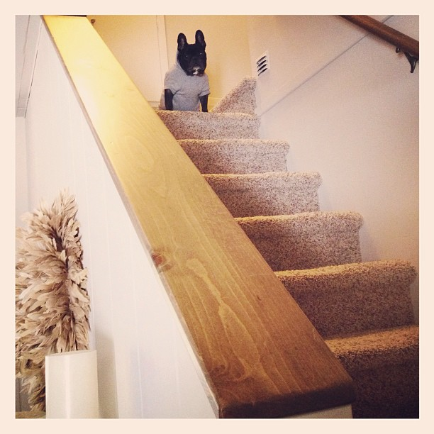 leRoy at the top of the stairs