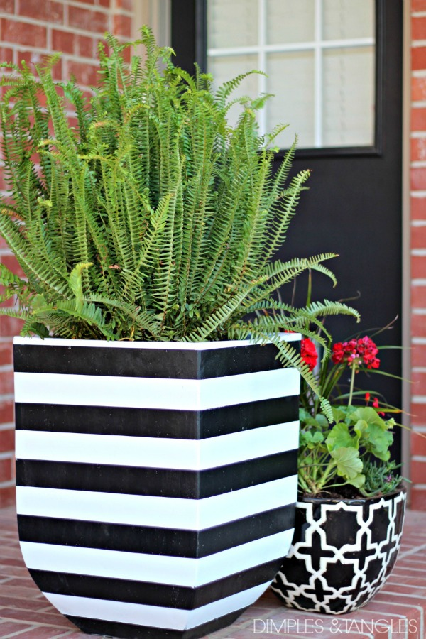 Black And White Striped Pots