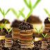 Hal Penting yang Perlu Diperhatikan Sebelum Investasi
