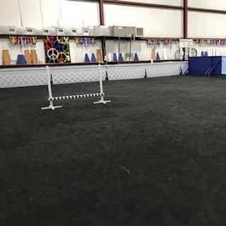 Greatmats Dog Agility Mats Black at MasterPeace Dog Training