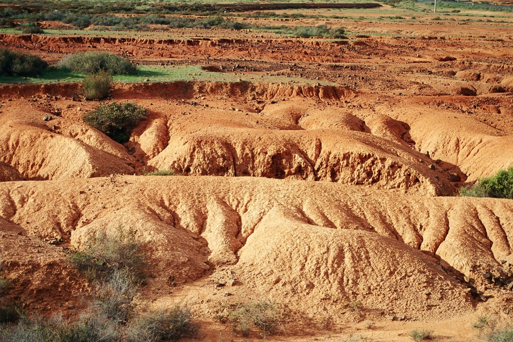 D a mundial del suelo un recurso agotable for Recurso clausula suelo