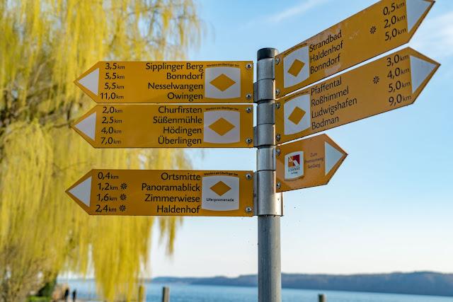 Riedwiesen und Steiluferlandschaften am Überlinger See Etappe 4: Von Sipplingen durch die Steiluferlandschaft nach Überlingen | Wandern Bodensee 2
