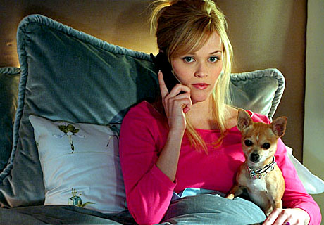 Austenitis: Movie: Legally Blonde