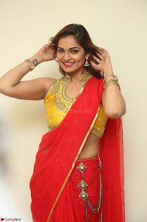 Actress Ashwini in Golden choli Red saree Spicy Pics ~  044.JPG