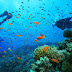 Combo Offers for Water Sports in Malvan With Scuba Diving in Tarkarli Beach