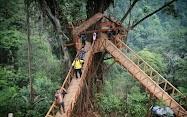 Rumah Pohon Tombo Bandar