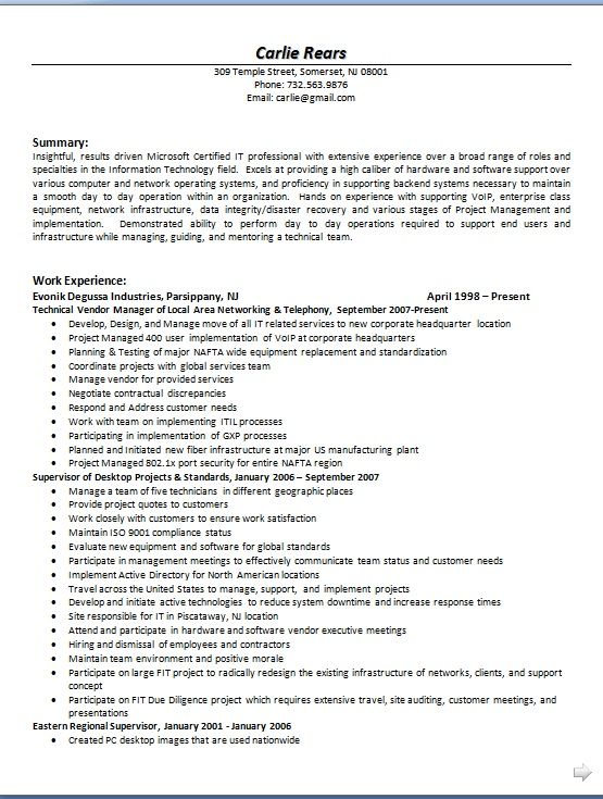 technical vendor manager sample resume format in word free