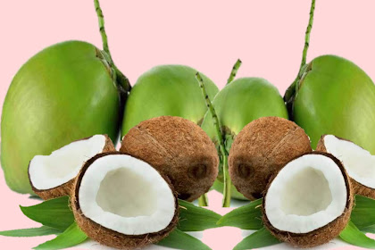 4 BENEFITS OF COCONUT FRUIT FOR HEALTH