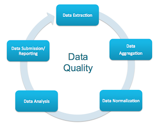 Master Data Quality Improvement