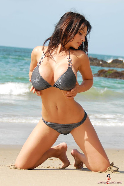 Denise-Milani-Beach-Silver-bikini-hottest-photoshoot-pics-17