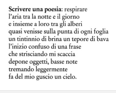 Poesie Sullalbero Gennaio 2018