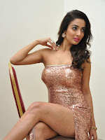 Heena Panchal sizzling at Thikka audio launch-cover-photo