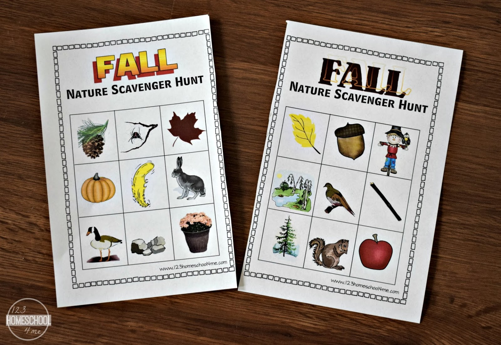 Fall Nature Scavenger Hunt Freebie