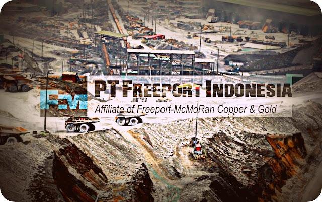Pemprov Papua Dukung Kebijakan Pempus atas Freeport Indonesia