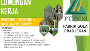 Lowongan Kerja Pabrik Gula PTPN XI Prajekan