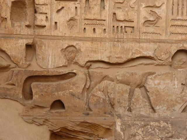 scena con toro nel tempio di medinet habu