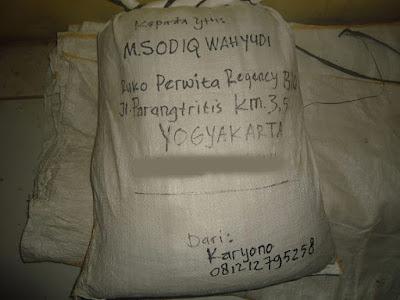Benih Padi Trisakti kirim ke Yogyakarta