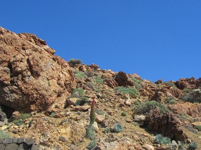 Panorama del Teide