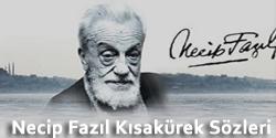 http://guzelsozler100.blogspot.com/2015/01/necip-fazil-kisakurek-sozleri-full-kisa.html