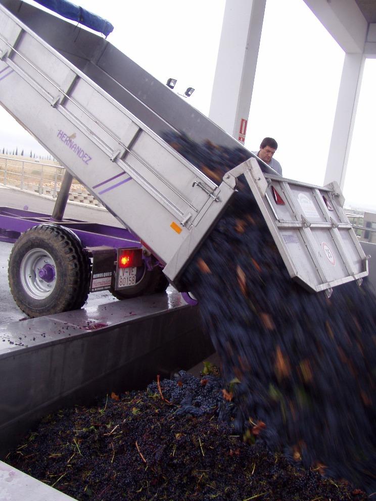 Fabrica de vinuri - Chiva, Valencia, Spania