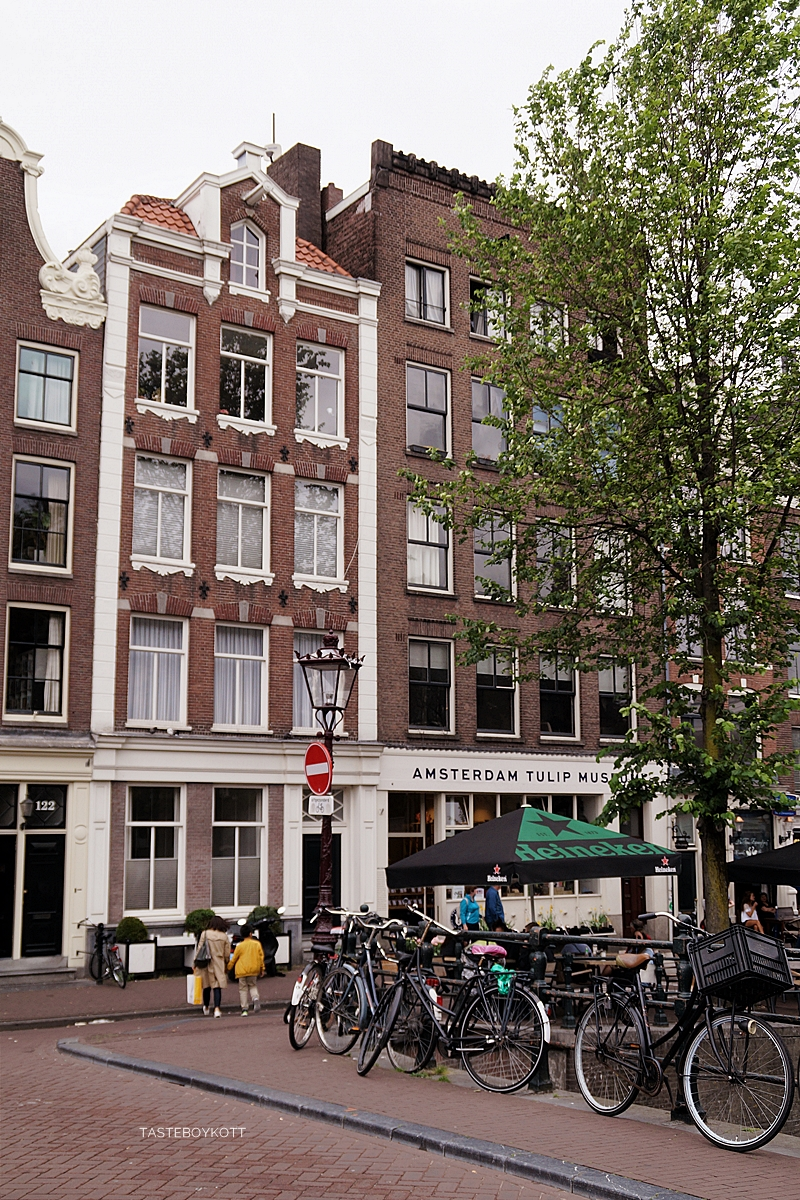 Amsterdam Sommer-Reisetipps | Grachtenhäuser niederländische Architektur | Interrail Juli 2017 | Tasteboykott